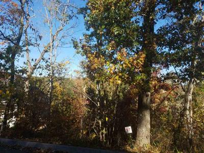 LOT 97 EAGLES RIDGE, Tazewell, TN 37879 - Photo 2