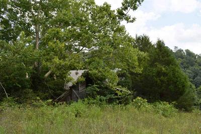57.5 AC UPPER CANEY VALLEY, Tazewell, TN 37879 - Photo 2