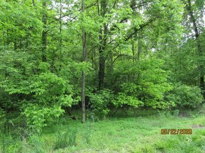 LOT 1 & LOT 37 LONG BEARD RD/RAVEN FORK RD, Tazewell, TN 37879 - Photo 1