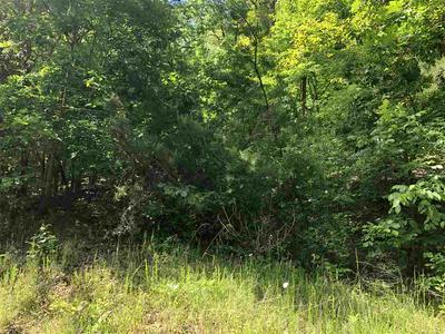00 JIM TOWN, Rogersville, TN 37857 - Photo 2