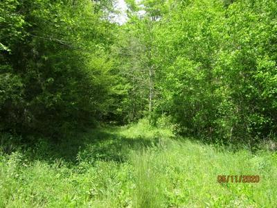 WAR CREEK RD, Sneedville, TN 37869 - Photo 1