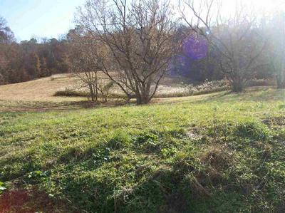 STOKE HILL ROAD, Sneedville, TN 37869 - Photo 2