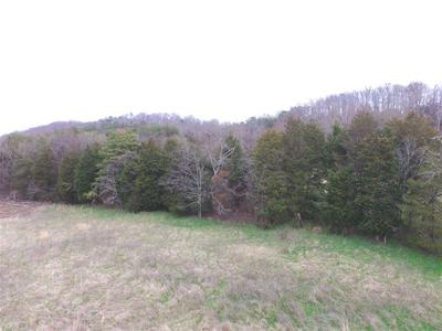 LOT 8 ANDERSON BEND RD, Russellville, TN 37860 - Photo 2