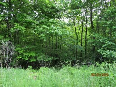 LOT 1 & LOT 37 LONG BEARD RD/RAVEN FORK RD, Tazewell, TN 37879 - Photo 2