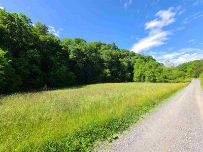 000 PALMER HOLLOW RD, Bybee, TN 37713 - Photo 1