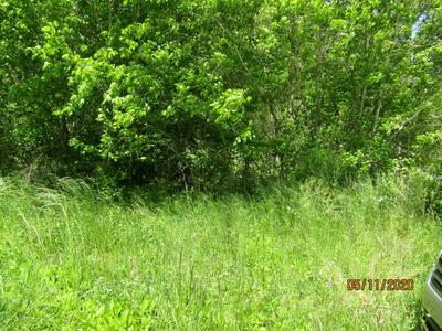 WAR CREEK RD, Sneedville, TN 37869 - Photo 2