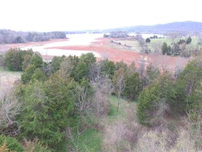 LOT 8 ANDERSON BEND RD, Russellville, TN 37860 - Photo 1