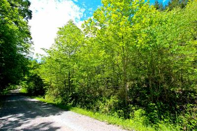 6.58 ACRES CROSSFIELD RD, Bybee, TN 37713 - Photo 2