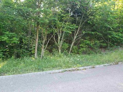 3700 MEADOWLAND DR, Morristown, TN 37814 - Photo 1