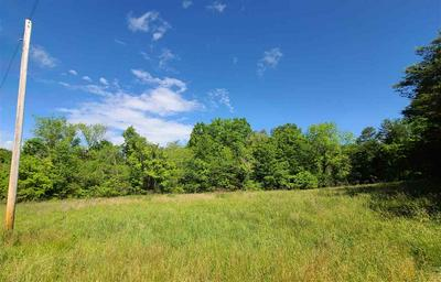 000 PALMER HOLLOW RD, Bybee, TN 37713 - Photo 2