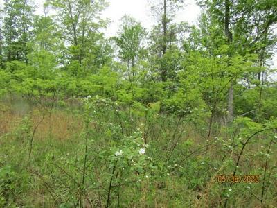 E PUMPKIN VALLEY RD, Sneedville, TN 37869 - Photo 1