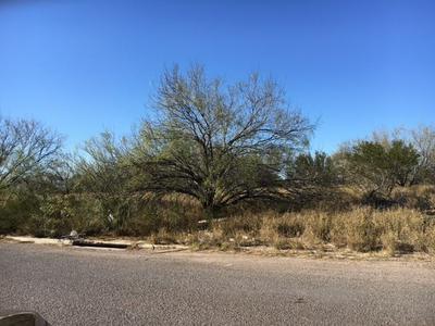 1102 BLACK DIAMOND ST, Laredo, TX 78045 - Photo 1