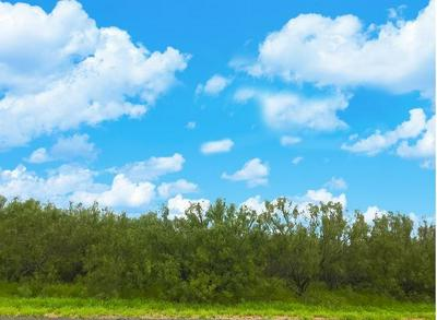 1102 DOLORES BLVD, Laredo, TX 78040 - Photo 1