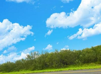 1102 DOLORES BLVD, Laredo, TX 78040 - Photo 2