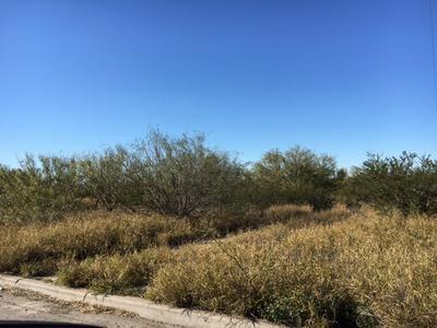 1102 BLACK DIAMOND ST, Laredo, TX 78045 - Photo 2