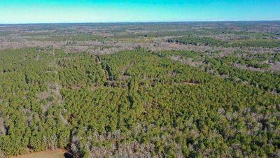 0000 EASEMENT RD, Bivins, TX 75555 - Photo 2