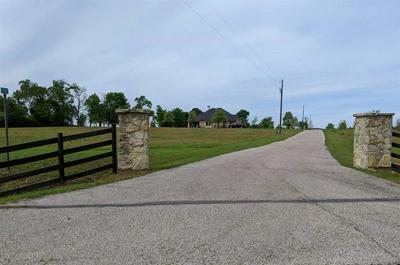 TBD BREAUX RD, HALLSVILLE, TX 75650 - Photo 1
