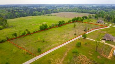 TBD BREAUX RD, HALLSVILLE, TX 75650 - Photo 2