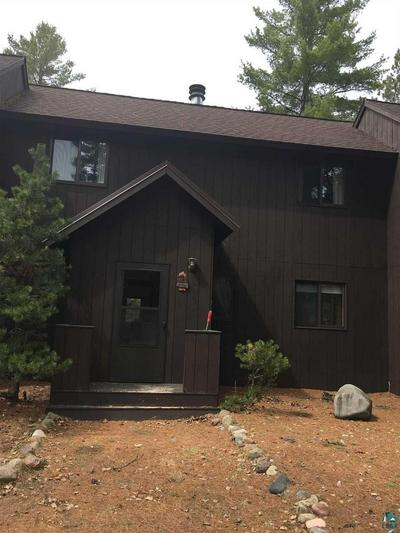 9934 NATIONAL FOREST LODGE RD # 3, Isabella, MN 55607 - Photo 1
