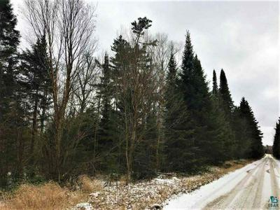 XXX STONY RIVER FOREST RD, Isabella, MN 55607 - Photo 1
