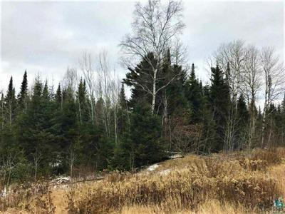 XXXX STONY RIVER FOREST RD, Isabella, MN 55607 - Photo 2
