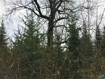 XXX STONY RIVER FOREST RD, Isabella, MN 55607 - Photo 2