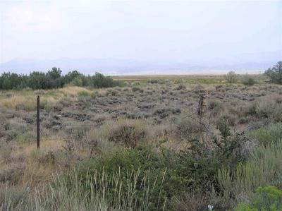 LOT 3 HIGHWAY 395 # 3, Bridgeport, CA 93517 - Photo 2