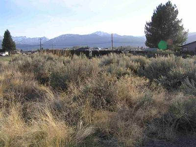 COMMERCIAL LOT AURORA CANYON # NONE, Bridgeport, CA 93517 - Photo 1