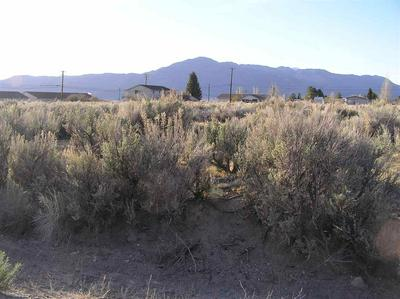 COMMERCIAL LOT SUMMER'S MEADOW # NONE, Bridgeport, CA 93517 - Photo 1