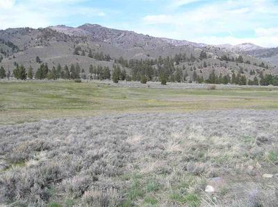 LOT 32 TOIYABE MEADOWS HWY 395 # 32, Bridgeport, CA 93517 - Photo 2