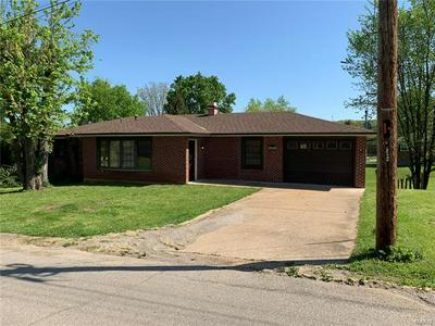 299 NICHOLSON DR, Potosi, MO 63664 - Photo 1