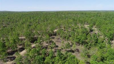 0 TRACT 1 OFF FSR 2245, Belleview, MO 63623 - Photo 2