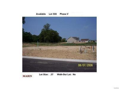 1061 OAKMONT-LOT 309 LANE, Union, MO 63084 - Photo 1