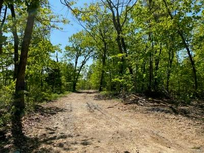 0 TRACT 2 OFF FSR 2245, Belleview, MO 63623 - Photo 1