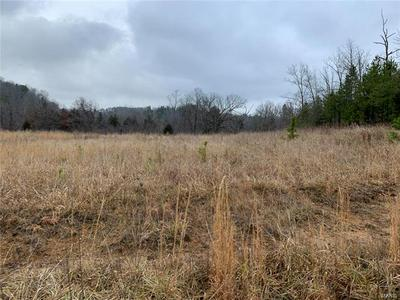 0 OFF COUNTY RD 428, Redford, MO 63665 - Photo 2