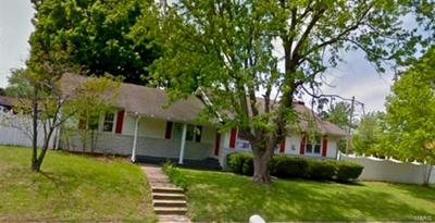 500 S BROADWAY, Goreville, IL 62939 - Photo 1
