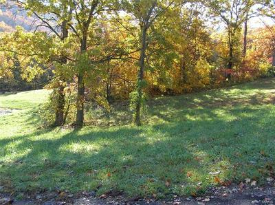116 SYCAMORE, Hermann, MO 65041 - Photo 1
