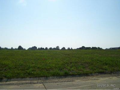 4104 SUMMER OAK DR, Smithton, IL 62285 - Photo 2