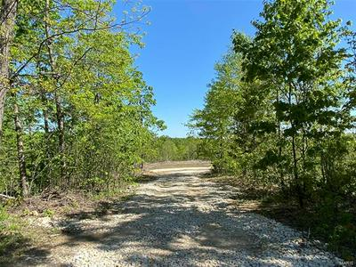 0 TRACT 4 HWY 32, Belleview, MO 63623 - Photo 1