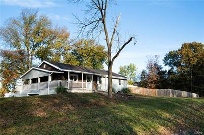 9231 COUNTY HIGHWAY 11, Nashville, IL 62263 - Photo 1