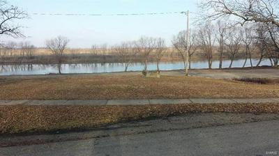 0 MAIN STREET, Evansville, IL 62242 - Photo 1