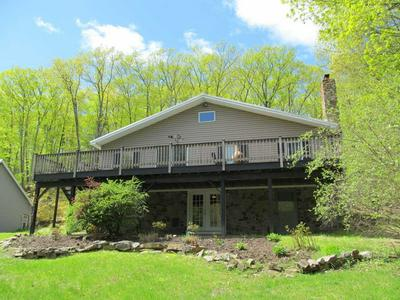 217 MOUNTAIN RD # 1, Stanford, NY 12581 - Photo 1