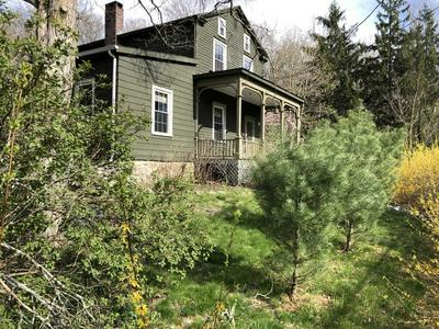 1226 DUELL RD, Stanford, NY 12581 - Photo 1