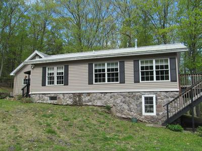 217 MOUNTAIN RD # 1, Stanford, NY 12581 - Photo 2