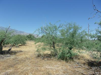 POWERLINE ROAD, Safford, AZ 85546 - Photo 2