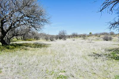 TBD S PUSCH STREET, Arivaca, AZ 85601 - Photo 2