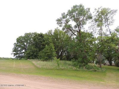 435 W WALNUT AVE, Frazee, MN 56544 - Photo 1