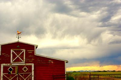 1341 COUNTY LINE ROAD, Fairfield, MT 59436 - Photo 2