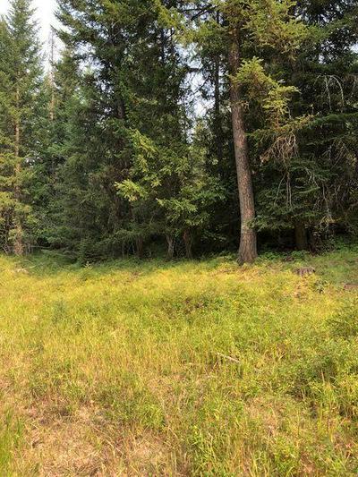 NHN FORTINE CREEK ROAD, Trego, MT 59934 - Photo 2