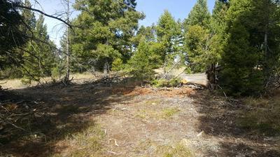 41 MUSKRAT RD, Helmville, MT 59843 - Photo 2